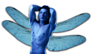 blue fairy boy