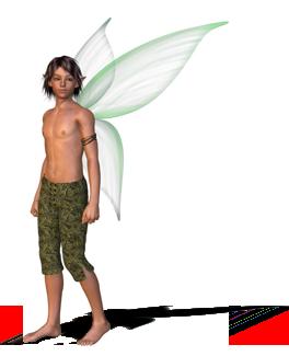 faerie boy